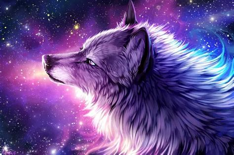 Loup stellaire | Loup dessin