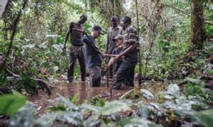 Congo basin's peaty swamps are new front in climate change