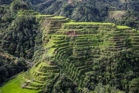 Banaue-philippines | Where to see the world's most