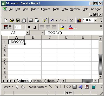 MS Excel: How to use the TODAY Function (WS)